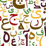Arabic Pos Software